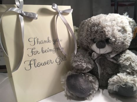 Gift bag with teddy